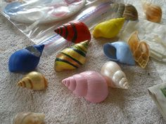 A local senior artist friend of ours, Julie Overdorf, cleaned out various empty snail shells from the beach and her garden, and then painted these shells, resulting in cool and unusual gifts!