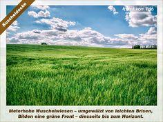 Kunst vom Feld: Kuscheldecke – www.kunstvomfeld.de