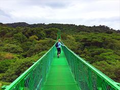 From zip lining to hanging bridges and some of the tastiest food in the country, here are the top things to do in Monteverde Costa Rica.