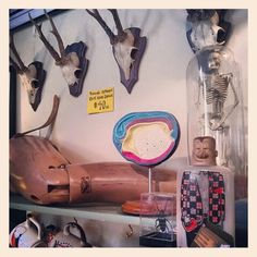 Shop ALLEY OOP VINTAGE! We've got skulls, prosthetic legs, anatomy models, Drunken Dave flask, skeletons and MORE this Halloween season!!! www.facebook.com/AlleyOopVintage