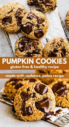 These gluten free and dairy free paleo pumpkin chocolate chip cookies are made with raw cashews and heavenly dark chocolate. They can be made in one bowl, and they are a delicious easy, and healthy dessert to make for the family. #pumpkin #cookies #paleo #glutenfree Paleo Cookie Recipe, Paleo Cookies, Healthy Cookie Recipes, Fun Baking Recipes, Healthy Snacks, Gluten Free Pumpkin Cookies, Pumpkin Chocolate Chip Cookies, Gluten Free Desserts, Delicious Desserts
