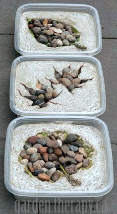 How to Make Leaf Imprint Stepping Stones Made from Concrete (via Garden Therapy)