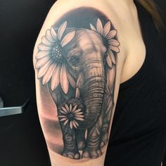 sunflower elephant