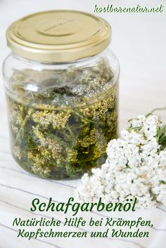 Help with cramps and migraine with yarrow oil - - Natural Health Remedies, Herbal Remedies, Ginger Benefits, Salud Natural, Natural Foods, Natural Products, Health Eating, Medicinal Herbs, Natural Treatments