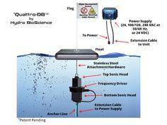 Game Changer - The Quattro-DB Ultrasound Algae Control System Is Here - Pond Algae Solutions Blog