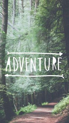 Adventure Forest Path iPhone 5 Wallpaper