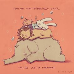 You're not especially lazy...you're just a mammal