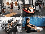 Online database of exercises for you and your clients!