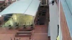 Ce garçon est monté sur un immeuble pour sauver un chien http://www.dailymotion.com/video/x48ynzr_ce-garcon-est-monte-sur-un-immeuble-pour-sauver-un-chien_animals