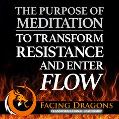 A few moments of meditation can change everything. #purpose #flow #transformationalleadership #facingdragons