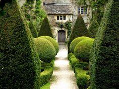 Topiary in an English Garden Dream Garden, Home And Garden, Garden Cottage, Formal Garden Design, Topiary Garden, Boxwood Topiary, Olive Garden, Formal Gardens, English Countryside