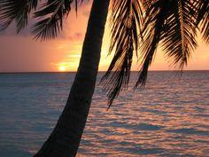 Ari Atoll auf den Malediven