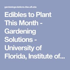 Edibles to Plant This Month - Gardening Solutions - University of Florida, Institute of Food and Agricultural Sciences