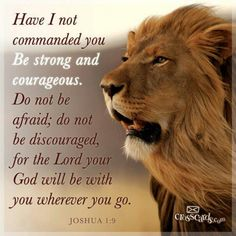 "Joshua 1:9 Bible verse with lion, king of the jungle. ""I command you; be firm and steadfast! Do not fear nor be dismayed, for the Lord your God, is with with you wherever you go."""
