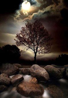 Moonrise ~ in Ireland