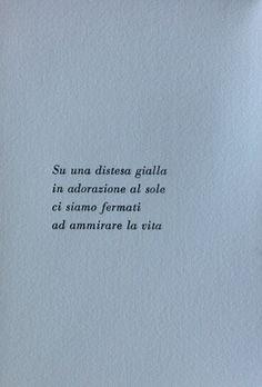 8992. Sara Elena Rossetti, Girasoli_pag 2