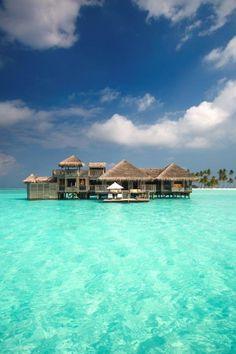 next place to try in the Maldives  Gili Lankanfushi
