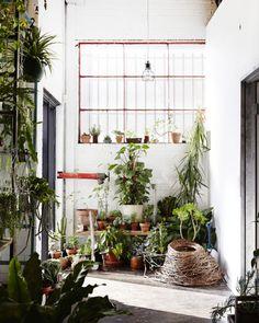 Urban jungle garage