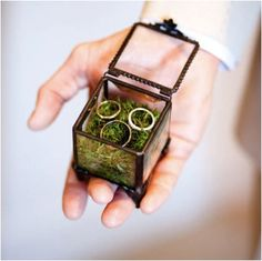 A box. With moss. And rings. Don't know who the third ring is for...lol.