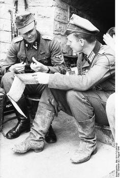 ■ 3.SS Totenkopf