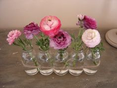 Flowers in milk bottles