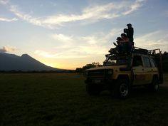 Baluran Safari