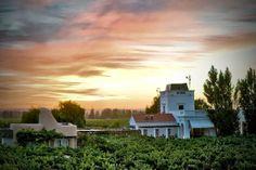 Cavas Wine Lodge, Mendoza, Argentina - Hotels - Mendoza - Argentina - South America - Travel