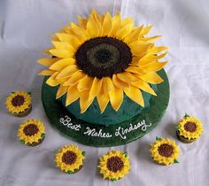 the customer is going to box the cuppies up individually. I did a hibiscus cake like this. Sunflower Birthday Parties, Sunflower Party, Pretty Cakes, Cute Cakes, Beautiful Cakes, Hibiscus Cake, Sunflower Cookies, Novelty Cakes, Cake Decorating Tips