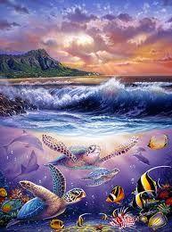 Steve Sundram  Hawaii looks like this