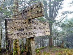 Signs and markers guide short and long-distance hikers on the Appalachian Trail in Great Smoky Mountains National Park in North Carolina. (Thomas Shaw, Share the Experience)