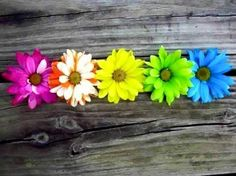 Colored Daisies 1 by on DeviantArt Facebook Cover Photos Flowers, Cover Pics For Facebook, Timeline Cover Photos, Twitter Cover, Facebook Timeline Covers, Cover Quotes, Cover Photo Quotes, Cover Wallpaper, Iphone Wallpaper