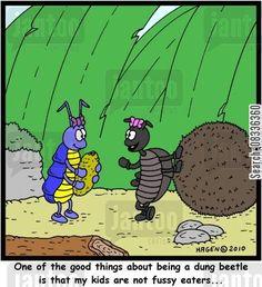 dung beetles cartoons - Humor from Jantoo Cartoons