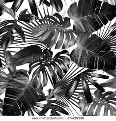 Graphic Palm Leaves Seamless Background Stock Vector - Illustration of aloha, black: 73887193 Tropical Wallpaper, Cool Wallpaper, Wallpaper Backgrounds, Summer Wallpaper, Vinyl Wallpaper, Tree Wallpaper Painting, Wallpapers, Botanical Wallpaper, Palm Tree Leaves