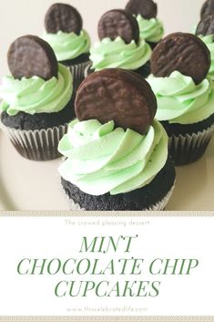 Quick and easy cupcakes that are always sure to please a crowd! This is one of my top cupcake recipes! If you love mint chocolate chip ice cream, these mint chocolate chip cupcakes will become your new favorite! Chocolate Chip Cupcakes, Chocolate Chip Ice Cream, Mint Chocolate Chips, Chocolate Cake, Mini Cakes, Cupcake Cakes, Baking Cupcakes, Salty Cake, Ice Cream Desserts