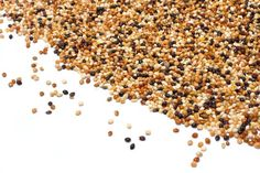 If you're working on switching to a lectin-free diet, allow millet to become a new go-to ingredient for you, Enjoy the nutty flavor and fragrance!
