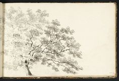 Joseph Mallord William Turner (1775‑1851), A Tree, with a Line of Trees Beyond, 1789, Graphite et aquarelle sur papier, support: 16,0 x 24,9...