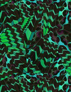 Midnight tropicals by Elena Belokrinitski on Behance                                                                                                                                                                                 More