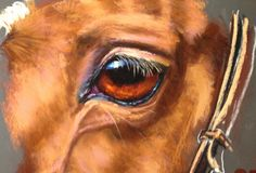 How to Paint a Horse's Eye in Pastel by PhilDavies