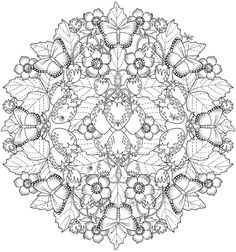 Pin by aj groome on coloring mandala elde nakış, desenler, m Butterfly Coloring Page, Mandala Coloring Pages, Free Coloring Pages, Coloring Books, Colorful Drawings, Colorful Pictures, Nature Photography Flowers, Paper Toy, Mandalas Drawing