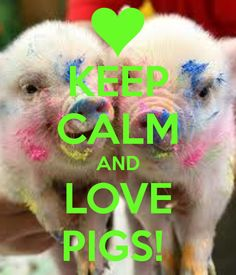 KEEP CALM AND LOVE PIGS!