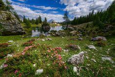 Croda da Lago - Dolomites, province of Belluno, Veneto, Northern Italy