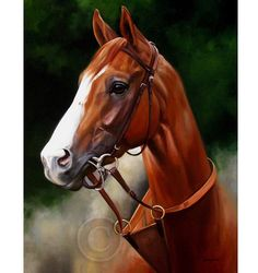 """California Chrome Art Print by Janet Crawford. Titled """"California Dreaming"""", a beautiful portrait of the chestnut Thoroughbred colt, California Chrome who dominated the 2014 racing season and the winner of the 2014 Kentucky Derby.  Image portrays the bright eyed champion in his morning training tack. From original 2014 oil painting by Janet Crawford. Giclee art print on fine watercolor paper, signed in pencil."""
