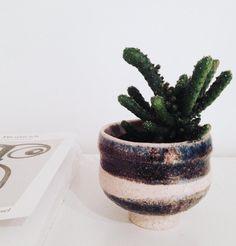 #ceramics #keramik #planters #succulent