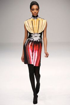 The complete Mary Katrantzou Fall 2009 Ready-to-Wear fashion show now on Vogue Runway.