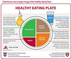 Opinion on USDA's MyPlate vs. Harvard's Healthy Eating Guide