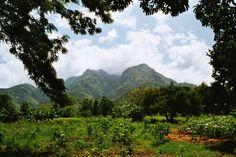 tanzania art   Uluguru Mountains, Tanzania by TuulikkiW