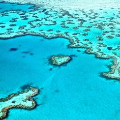 Stunning blues in the Great Barrier Reef. Photo courtesy of danflyingsolo on Instagram.