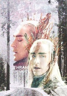 Thranduil, the elvenking of Mirkwood