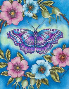 Beautiful butterfly by Lisa Brando - Extreme Coloring See the color combinations used to complete this by becoming a Patron. Butterfly Books, Butterfly Quilt, Paper Butterflies, Butterfly Painting, Butterfly Art, Coloring Book Art, Colouring Pages, Adult Coloring, Color Mixing Chart