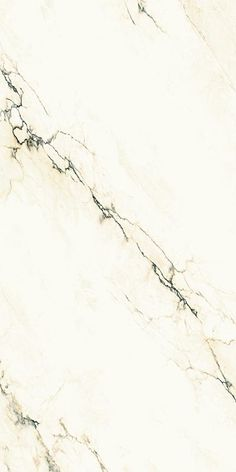 Porcelain Tile: Imperial white maximum: Marmi maximum